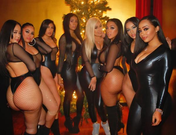 Dalii Baby: Winter Wonderland - Jose Guerra