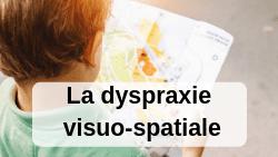 Dyspraxie Visuo-Spatiale (DVS)