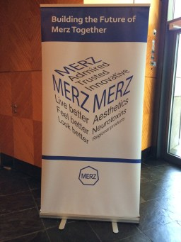 Merz Leadership Summit 2015
