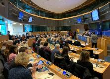 EU Parliament last week February 2020