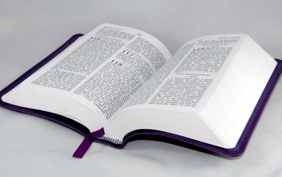 Святе Письмо з розважанням на 10 листопада