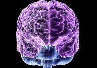 5 вражаючих фактів про чоловіче мислення