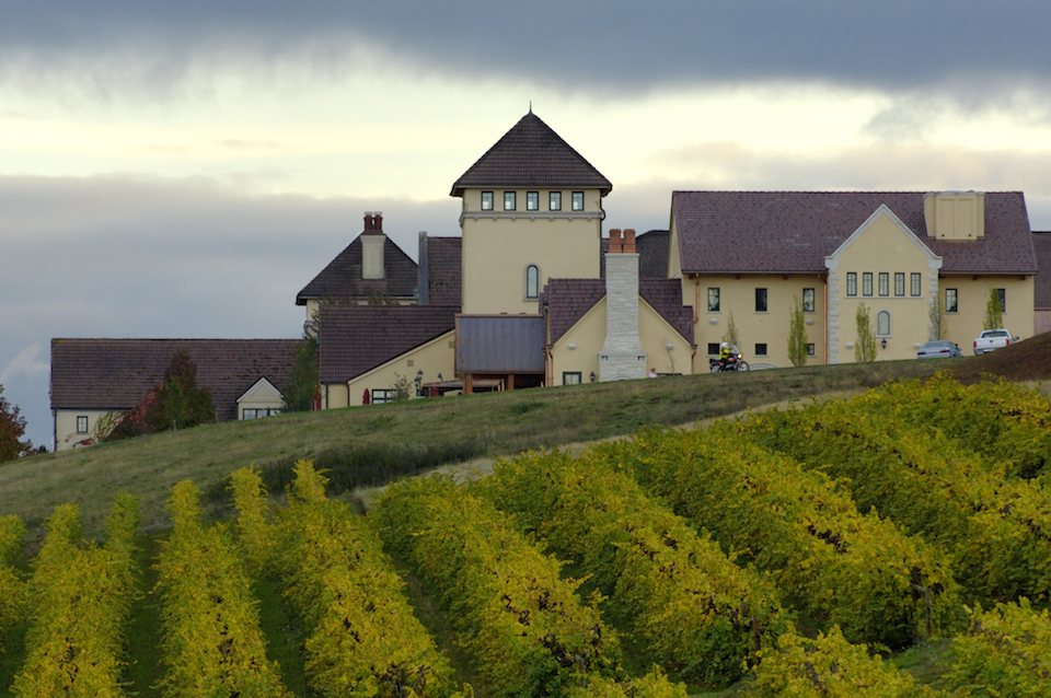 King Estate Winery, Loraine Valley, Willamette Valley, Oregon