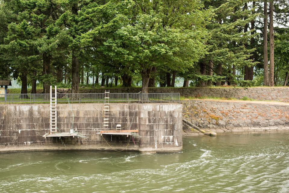 columbia river, brigham salmon, cascade locks
