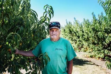 August 2016, Bob Jossy, owner Jossy Farm, Hillsboro, OR.