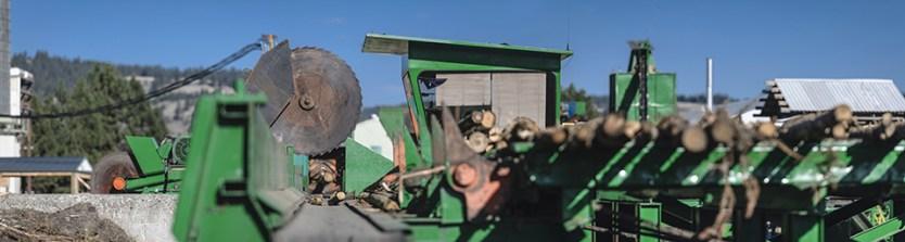 IBR biomas plant