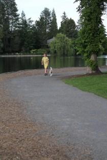 Drake-Park-Dog-Walking-061715-004