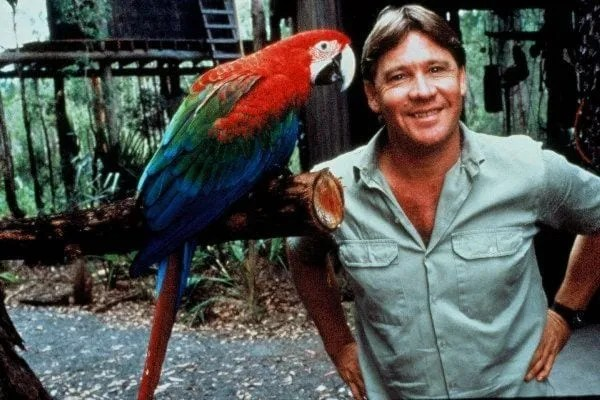 9dec559878b98c0a7ac49a6e579d446e--steve-irwin-jungle-girl