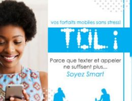 Camtel (Cameroon Telecommunications ) - Yaoundé