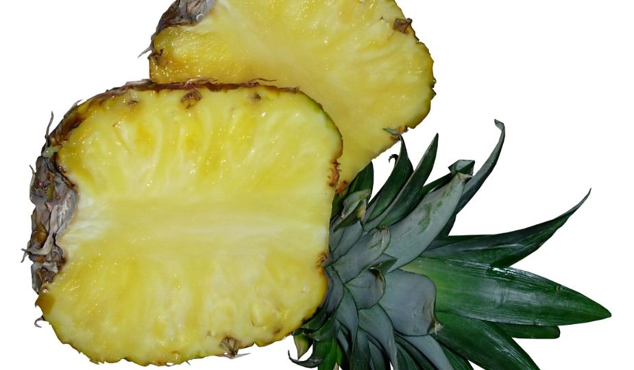 Ananas tranchée - Pineapple fruit