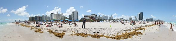 sports in Miami