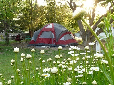 Backyard Camping for Staycation Destination