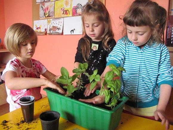 edukacja-ekologiczna3