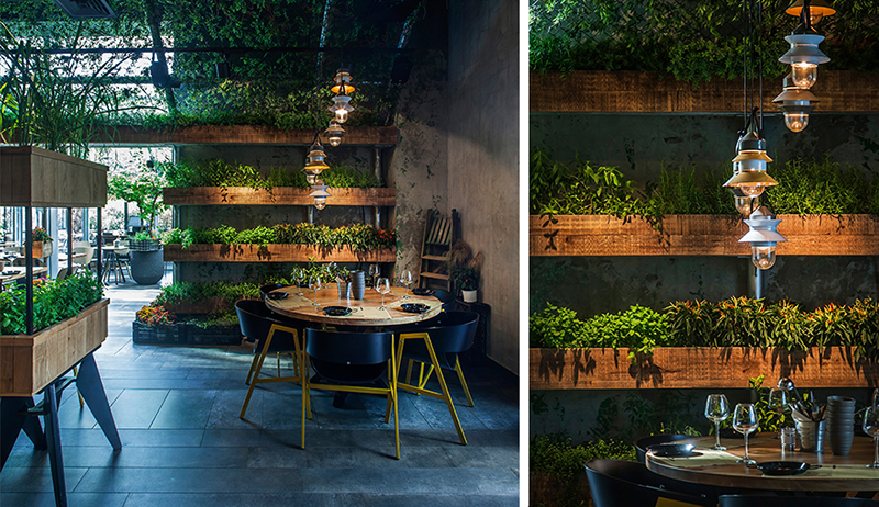 Restaurant In Israel Uses In House Grown Herbs For Their