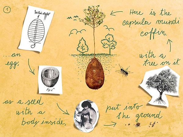 biodegradable-burial-pod-capsula-mundi-03