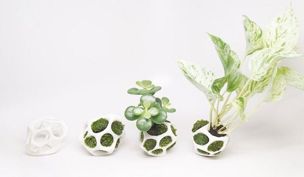 cella-house-plant-holder-08