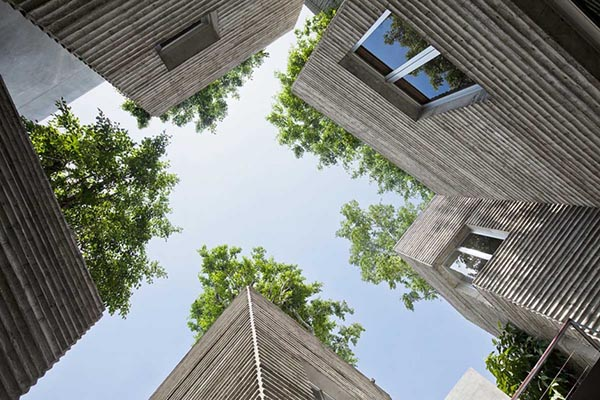 house-for-trees-5