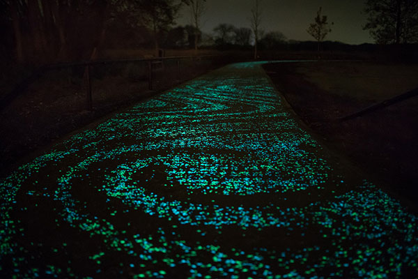 illuminated-bike-path-inspired-by-van-gogh-painting-studio-roosegaarde-03