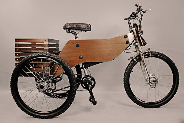 raiooo-three-wheeler-wooden-bike-5