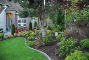Full- Service Landscaping