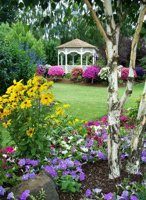 Lawn care maintenance programs
