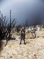hutan mati lagi