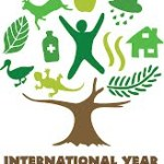 20 år i Østafrikas skove