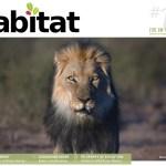 Habitat #10