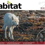 Habitat #20