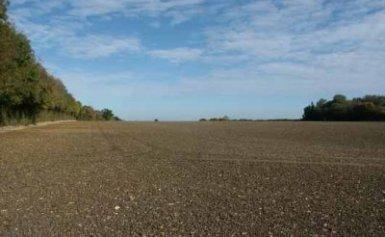 Kviečiame ūkininkus suskubti deklaruoti žemės plotus