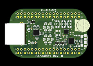 BaconBits rendering