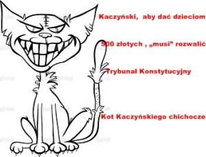Kot kaczyńskiego