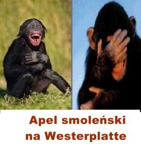 Kopia (4) Kaczyński - małpy