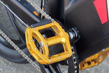 XT-Racing Herren Bike