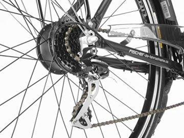 E-Bike Proline Fischer