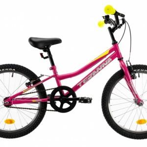 DHS Speedy 20 Inch 23 cm Meisjes V-Brake Roze