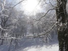 山歩き講習会〈はじめての冬山編〉兜明神岳