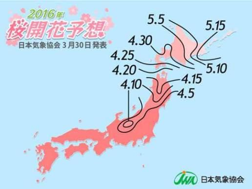 2016年桜開花予想(第7回)