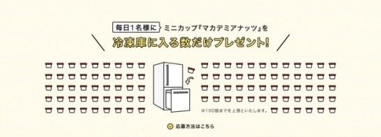 """""""マカデミマニア"""" 募集キャンペーン実施!"""