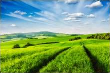 チェコ - モラヴィアの大草原