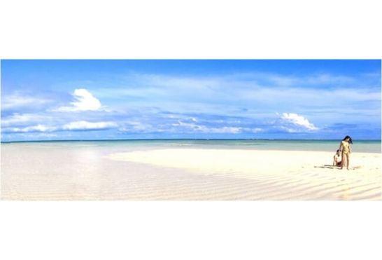 ▲行ってみたい!国内の夏の絶景第1位!鹿児島県 与論島「百合ヶ浜」(イメージ)