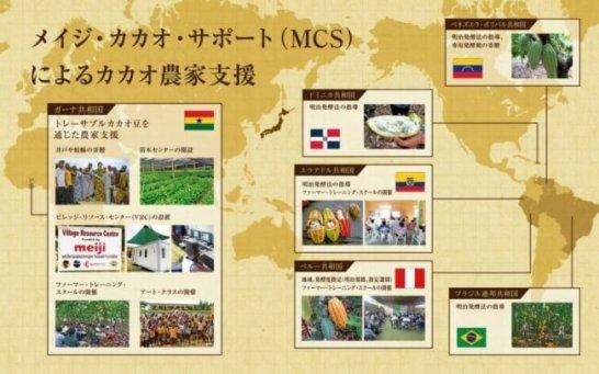 メイジ・カカオ・サポート(MCS)