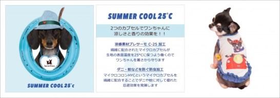 Summer Cool 25℃