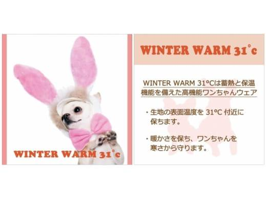 Winter Warm31℃