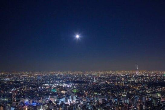展望台からの夜景