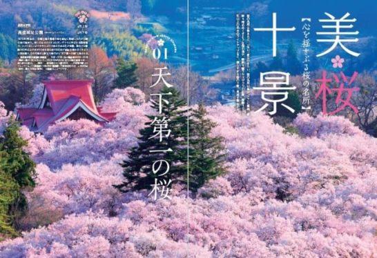 『桜の絶景 首都圏版』(ぴあ)中面