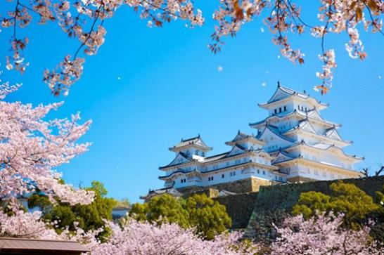 1位 姫路城(ひめじじょう)<兵庫県> 姫路城