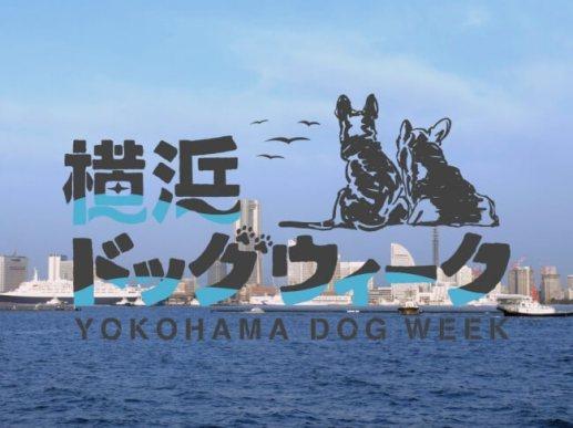 (TM)横浜ドッグウィーク