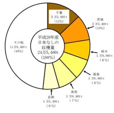 参照:農林水産省「農林水産統計」平成29年産日本なし、ぶどうの結果樹面積、収穫量及び出荷量