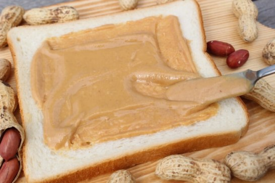 柏の葉T-SITE 第3回パン祭り 開催